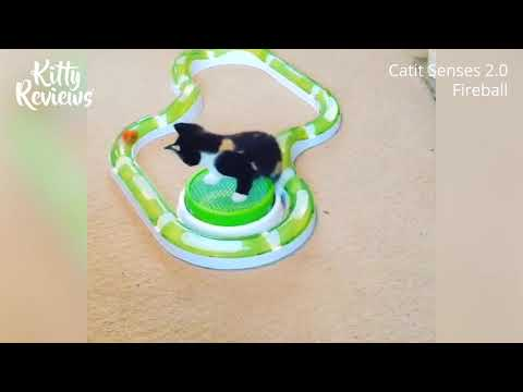 Kitty Reviews - Catit Senses 2.0 Fireball