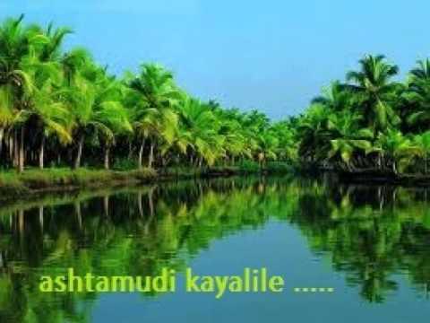 Ashtamudi kayalile