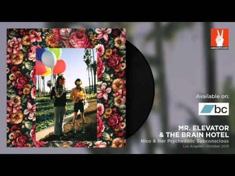 Mr. Elevator & The Brain Hotel - Nico