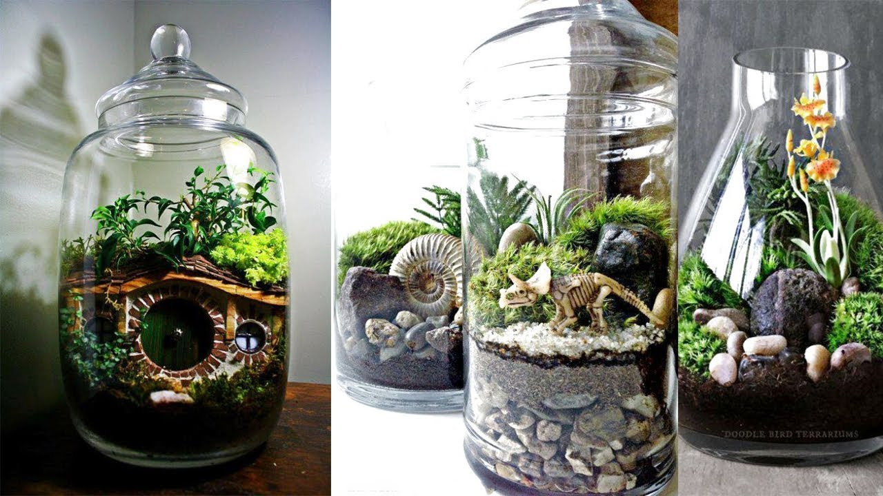 Creative Succulent Terrariums Ideas Easy Diy Glass Terrariums