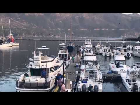 Two Oceans Tuna Derby 2017 - After the...