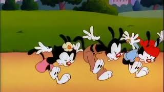 Animaniacs Wheel of Morality #13