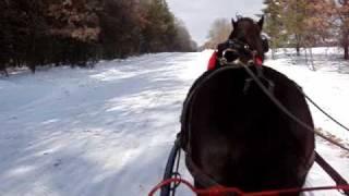 One Horse Open Sleigh Ride  #1