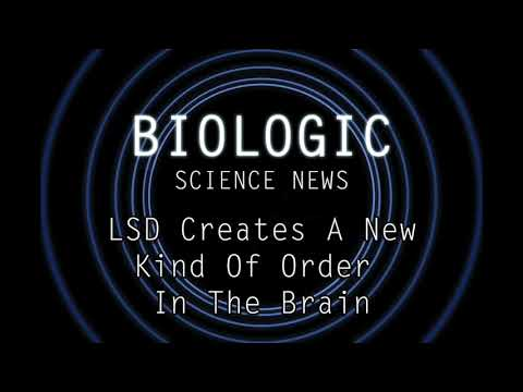 Science News - LSD Creates A New Kind Of Order In The Brain