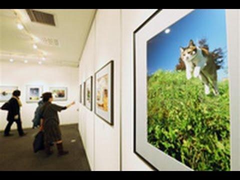 写真教室の生徒作品展 四季や自然...自信の一枚(2013/01/17)北海道新聞