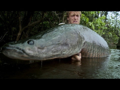 Необычные случаи на рыбалке или как спокойная рыбалка может превратиться в настоящее веселье