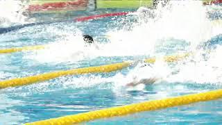 Чемпионат и первенство Новосибирской области по плаванию