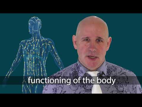 Meridiens - Acupuncture (anglais)