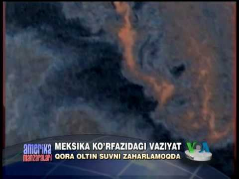 Meksika ko'rfazidagi vaziyat - Closer look at the oil spill in the Gulf of Mexico