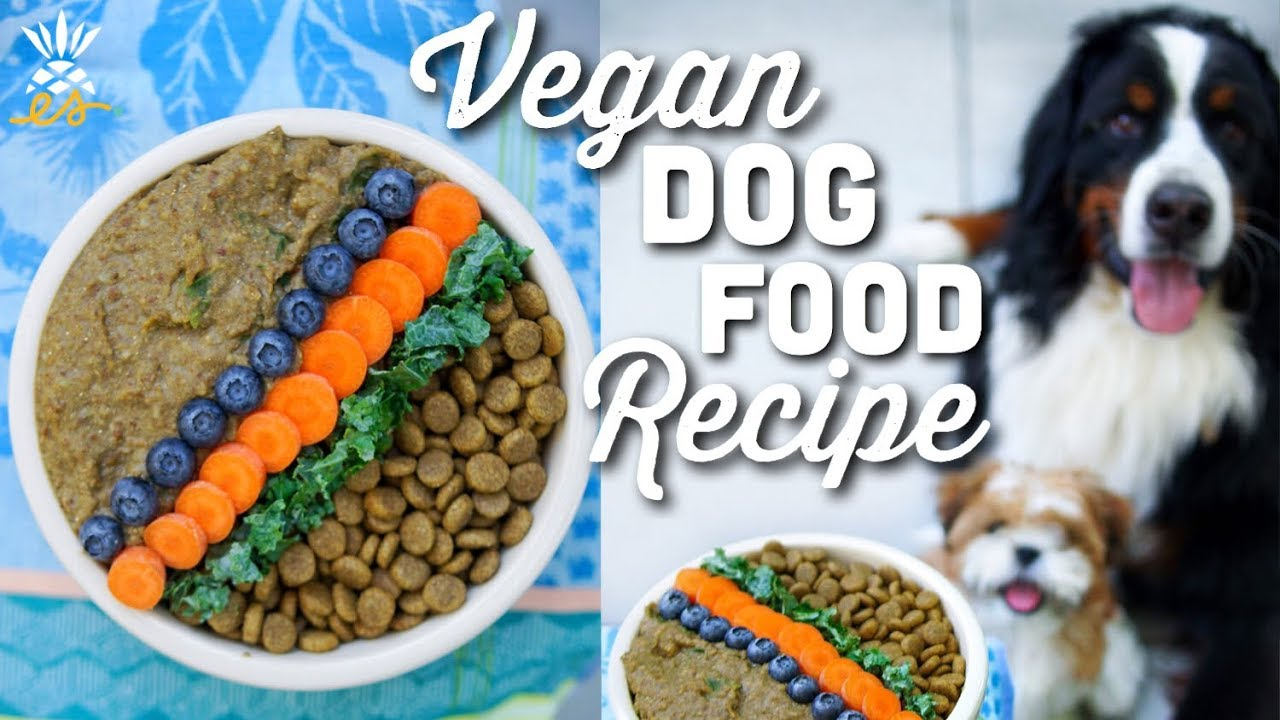 What We Feed Our Dog Homemade Vegan Dog Food Recipe