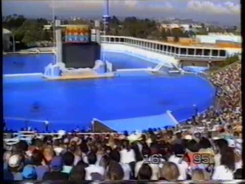 San Diego-Sea World 1995.MPG
