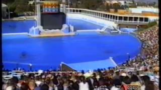 San Diego-Sea World 1995.MPG