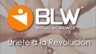blw presentacion de negocio 2016