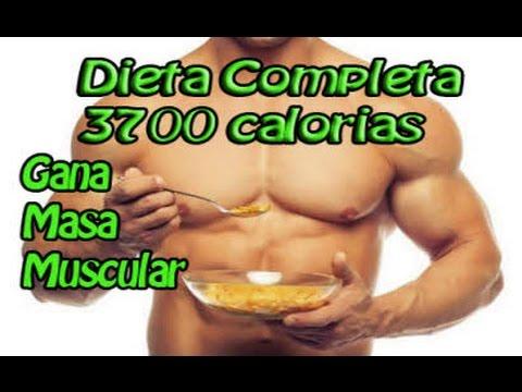 dieta de aumento de masa muscular para ectomorfos