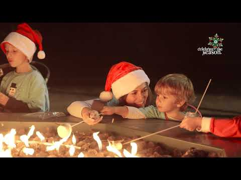 Celebrate The Season: Holiday Fair 2017