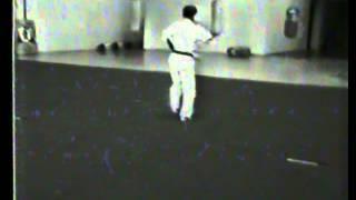 Matayoshi Tonfa Ich Odo 1981