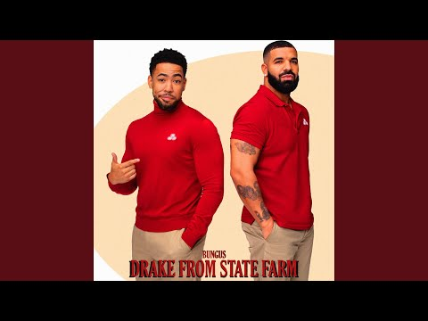 DRAKE FROM STATE FARM