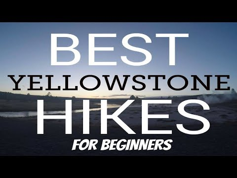 Top Yellowstone Hikes | FOR BEGINNERS