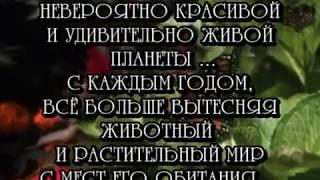 ХРАНИТЕЛЬ ВЕРЫ - Габбер Икона (Psy-Core Speed Mix)