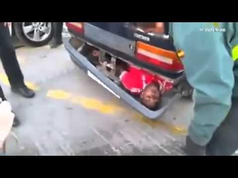 Bg Car Seat