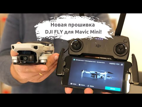 Новая прошивка DJI FLY 1.0.8: добавлены новые режимы для Mavic Mini!