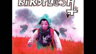 Birdflesh - Carnage in the fields of rice EP.wmv