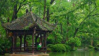 Sichuan Vlog: Dujiangyan Irrigation Ancient Town & Marathon!