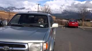 車内で留守番中の犬、しびれを切らして「クラクション」を鳴らしまくる