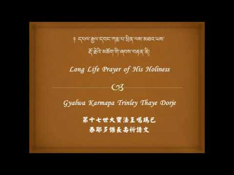 Long Life Prayer for His Holiness Karmapa (watch in HD quality)
