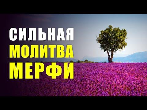 СОЗДАЙ ИДЕАЛЬНОЕ БУДУЩЕЕ | Сильная Молитва на Удивительное Будущее Джозефа Мерфи!