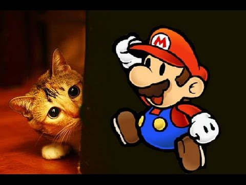 Chat Qui Fait Peur mario fait peur aux chats - parole de chat - youtube