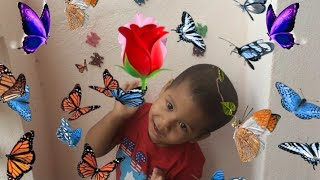 Learning colors with clay butterflies / Nursery rhymes for kids by kid