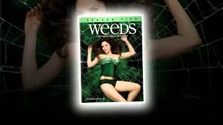 Weeds Seasons 1-8 DVD Box Set,Weeds Season 8 DVD Release