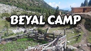 Beyal Camp - Fairy Meadows to Beyal Camp