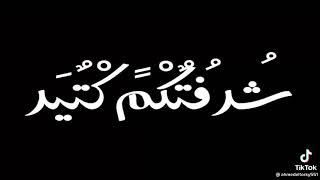 بكرة مهرجان بطولي واقف بطولي (طز طز فيكم) حمو الطيخا قبل اي حد