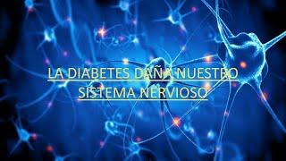 Del diabetes pie en la nervioso daño