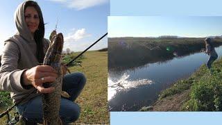 Topwater Weedless Fishing for Pike Belly with Custom Lures II/ ловля щуки з поверхні прикормки II