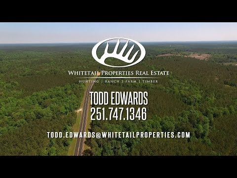 Timber Lease, Hunting, Recreational, & Investment Potential - Monroe AL 353 Acres