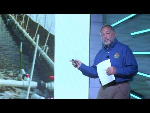 Disappearing Fisheries: Mariculture To The Rescue | Al Stokes | TEDxHiltonHead