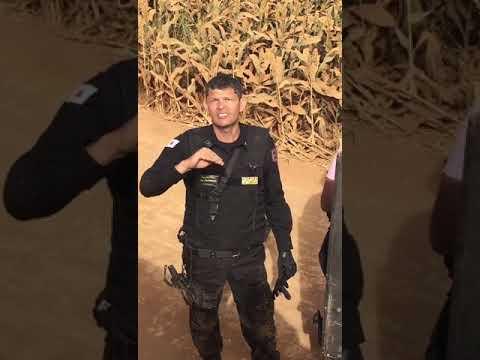 Ataque em Uberaba: momento de rendição de quadrilha