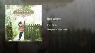 Play Boll Weevil