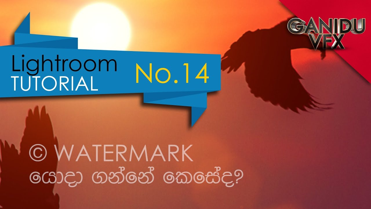 how to add a watermark in lightroom mac