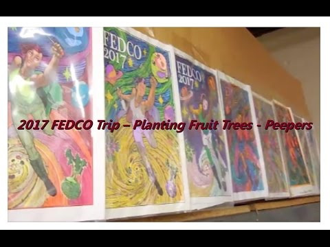 2017 FEDCO Supply Trip & Planting Apple Trees & Peepers