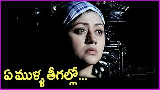 Chinnodu Telugu Movie Emotional Video Song | Sumanth | Charmi kaur