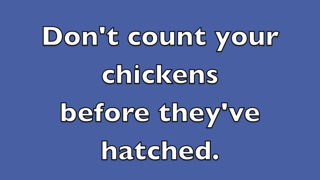 don t count your chickens before they hatch Don't count your chickens before they hatch definition at dictionarycom, a free  online dictionary with pronunciation, synonyms and translation look it up now.