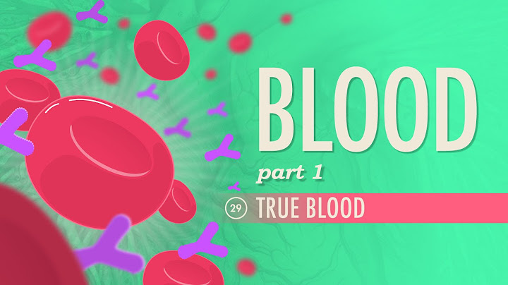 blood part 1  true blood crash course ap 29