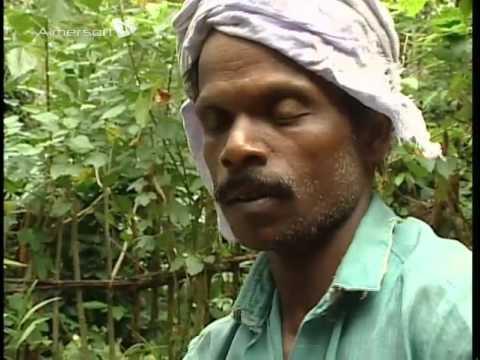 Hidden India The Kerala Spicela 01 Title 01