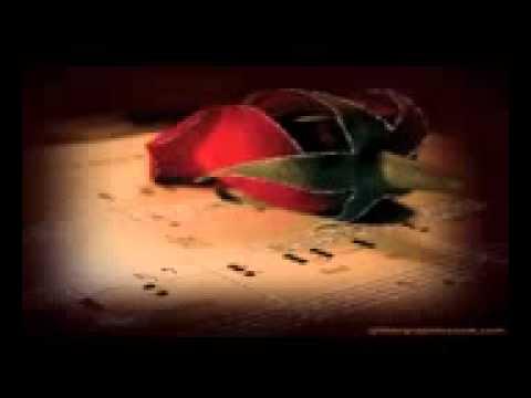 Hayo Rabba Dil Jalta Hai Mp4   YouTube