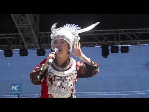 Chinese culture highlighted at S. Africa's Dias Festival