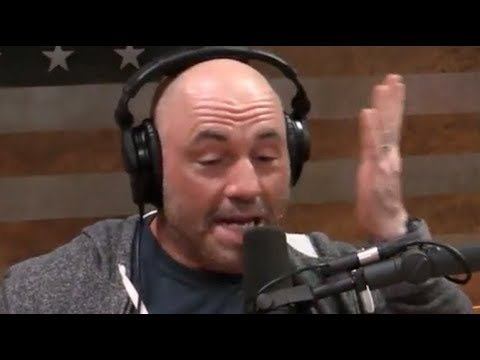 "Joe Rogan on the Carnivore Diet ""There's No Science Behind It"""